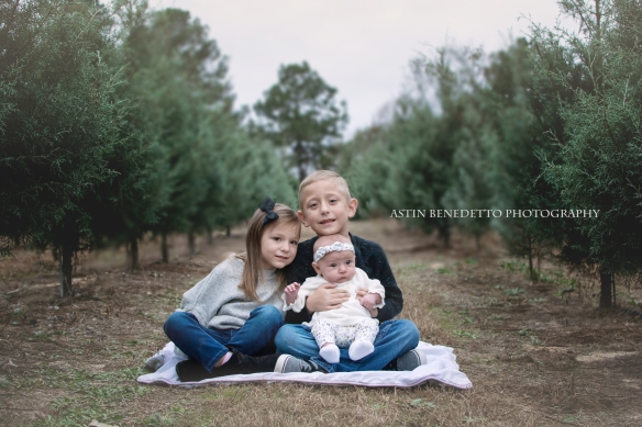 Astin-Benedett-Photography- Warren-County-NJ-Family-Photographer-siblings-sitting-row-of-trees-christmas-tree-farm